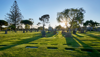 Home - Ivy Lawn Memorial Park & Funeral Home